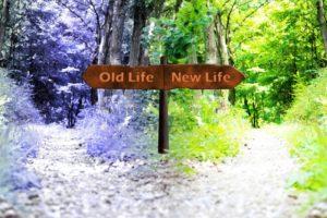 「新しい生活」「これまでと同じ生活」と立て看板の出ている二股に分かれた道